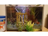 Fish tank (20L) - all included