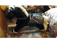 Old fashion rocking horse