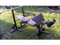 Gym weights, bench and stands