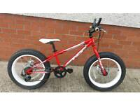 Indi Mulefa bike