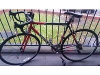 Reflex Sprint Gents 700C 14 Speed Bike