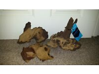 Aquarium Big Bogwoods 3 pcs