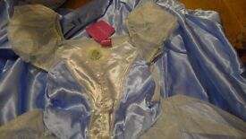 Cinderella dressing up costume age 9-10