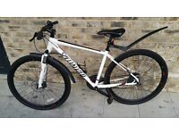 Mountain bike for ladies as well, bought last summer for £650 fluid idsc brake and new mudguards