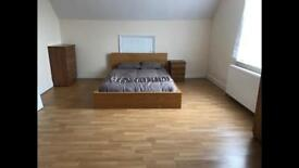 Very Large Room Available - Newly decorated