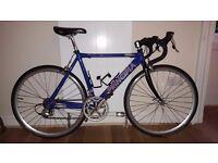Principia road bike (child/small adult)