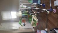 Kids swings...2 for sale...need to go!