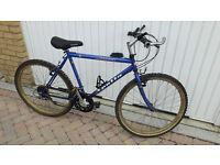 Mountain Bike: Gents Apollo Mountain bike £40