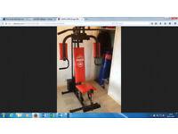 Multi Gym –York 401-phone 07747641616-Sunbury-on-Thames TW16