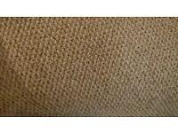 Oatmeal carpet.