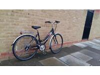 Ammaco York hybrid bike