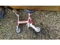 Adult clown bike