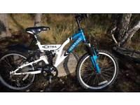 No8Boys mountain bike