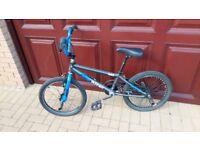Raleigh Wave Burner BMX Bike
