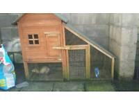 Ferret hutch & 2 ferrets