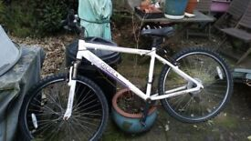 "Ladies Aspire 17"" frame bike spares or repair £25"