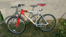 Team Saracen Fasttrax Mens Mountain bike