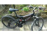 Silverfox mountain bike