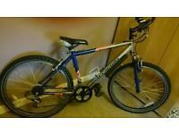 Barracuda 21 gear bike