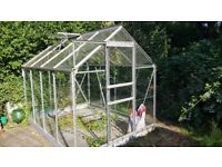 6ft 4' X 8ft 4' Greenhouse 6X8