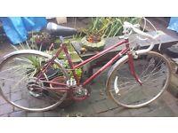 Bike joblot