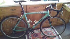Bianchi Rc nirone 7 53cm