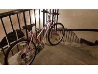 Pink Girls Mountain Bike MTB
