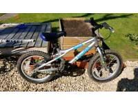 Boys bike (age 4+)