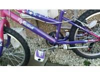Girls crane bike
