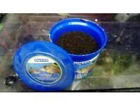 Cat fish food