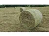 Big Round Bales of Hay baled on Tuesday