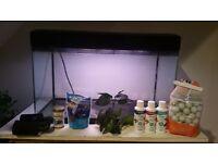 Fish tank (slight leak) and stuff