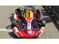 Birel motorsport, 125 rotax max, sinior class Kart,