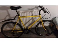 Mens Bicycle for Sale