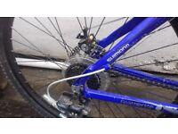 Barracuda Jacana Mens Bike