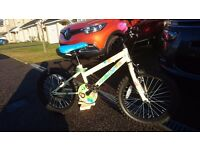 Girls Apollo Woodland Charm bike
