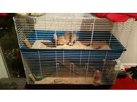 **Double Tier Rabbit Cage For Sale**