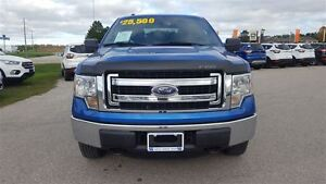 2013 Ford F-150 XLT 4X4 | One Owner | Tow Pkg Kitchener / Waterloo Kitchener Area image 4