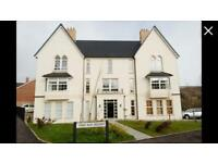 Luxury first floor apartment located just off the Antrim road