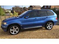BMW X5 4.6is estriol blue