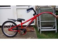 Childrens Tag along bike - near new condition. Only used once