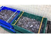 Decorative slate chippings
