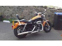 Harley Davidson 1200 Custom LTD XL almost new