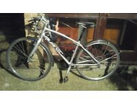 Avanti bicycle in good condition good tyres, mudguards and lock.