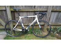 Giant OCR-1 Road Bike (Carbon Forks, Campagnolo gears, brakes, wheels etc)
