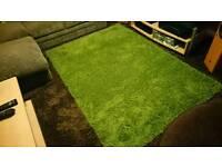 Beautiful big Green rug