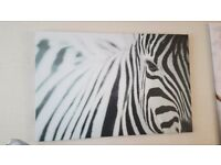 Large ikea canvas picture zebra