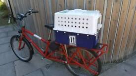 Box pet carry