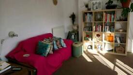 Bright room near Victoria Park, E9