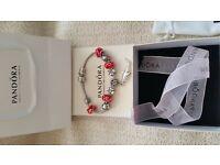 Pandora charm bracelet complete